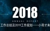 2018年工作总结及2019工作规划【小荷才来】